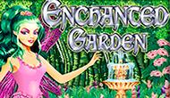 Автомат Enchanted Garde на деньги